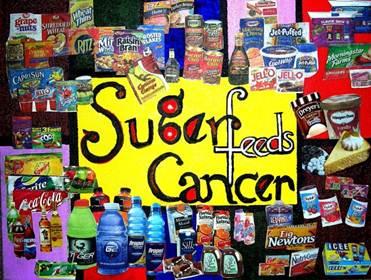 Description: http://www.olgakaczmar.com/SugarFeedsCancerSmall.jpg