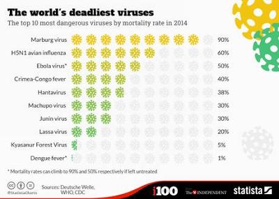 http://3.bp.blogspot.com/-j60_imTur4E/VDbzyvXdpSI/AAAAAAAAa-c/tOxS_aYRK6U/s400/deadliest%2BViruses.png