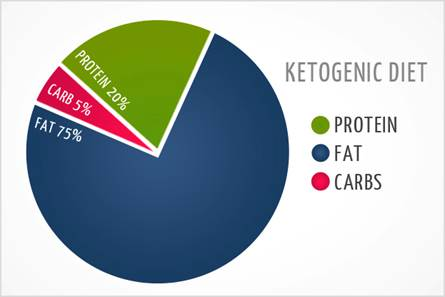 http://333oee3bik6e1t8q4y139009mcg.wpengine.netdna-cdn.com/wp-content/uploads/2014/02/ketogenic-diet-1.jpg