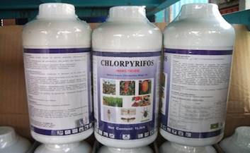 image-Chlorpyrifos_406x250