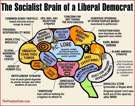 File:Liberal Brain.jpg
