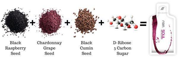 Soul seeds components.jpg
