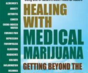 """marijuana in medicine essay I have been working on an essay for a sociology class in which we were assigned to write about a """"social problem."""