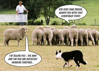 sheep dog trials im telling you the man and the do1 About Vigilant