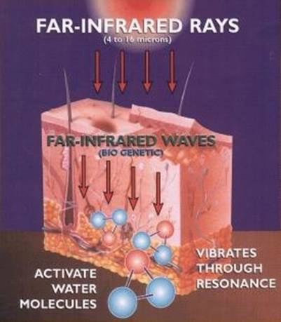 Far-Infrared Biomat