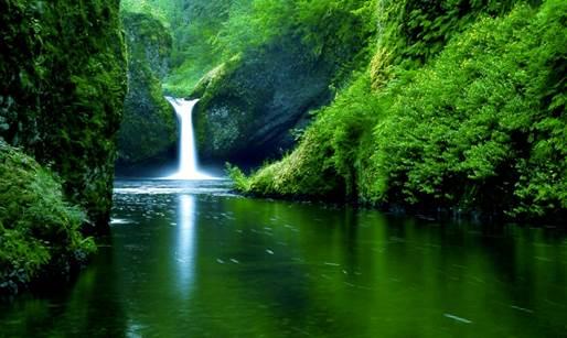 Description: https://www.gogreencebu.com/wp-content/uploads/2013/04/water-fall-hd-wallpaper.jpg