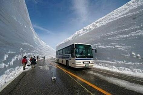 http://iceagenow.info/wp-content/uploads/2012/12/Ice-Age-Bus-1.jpg