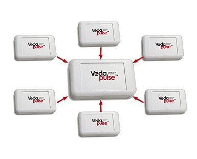 VedaPulse™ Digital Pulse Diagnosis