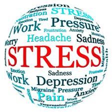 http://mla-format.com/wp-content/uploads/2014/02/stress_ball.jpg