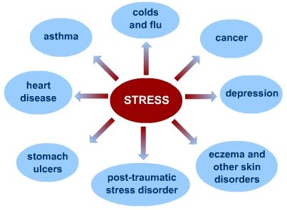 https://www.s-cool.co.uk/a-level/assets/learn_its/alevel/psychology/stress/what-is-stress/diagram4.jpg