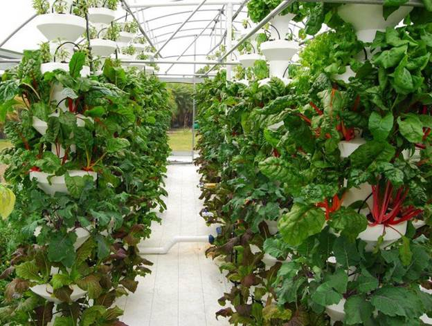 http://www.airgrownsystems.com/images/730_AGS_Vertical_Towers_-_Greenhouse_1.jpg