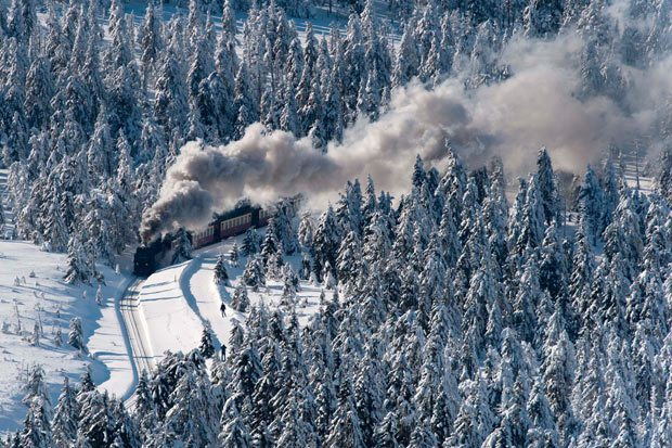 A train makes its way through a snow-covered forest in the Harz national park near Schierke, central Germany