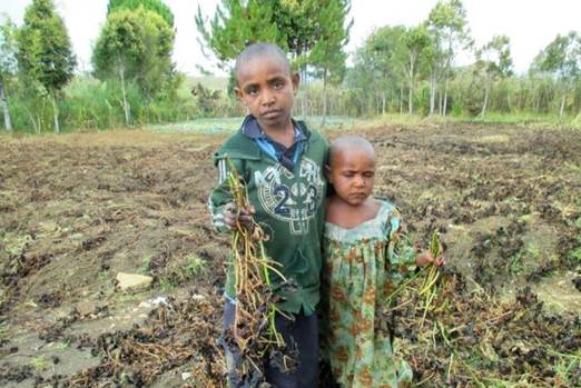 Children at Algi village with frost destroyed crops