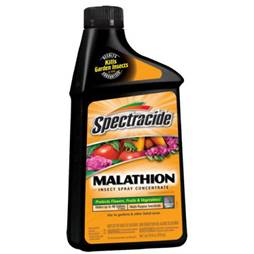 image-Malathion-Insecticides-Have-Possible-Carcinogenic