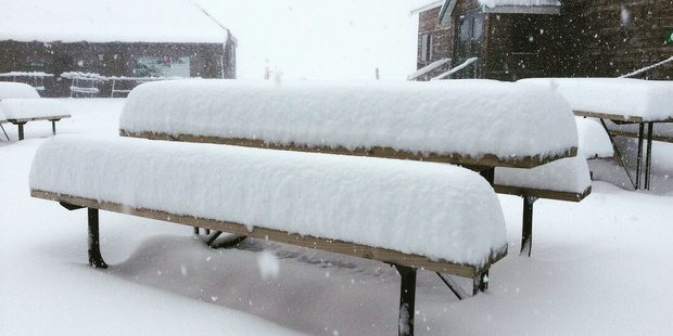 Snow fell for most of yesterday. Photo / Supplied via Matt McIvor, Cardrona Alpine Resort