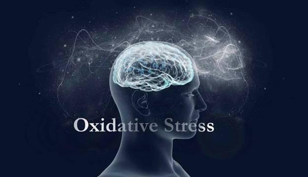 Oxidative Stress - Migraine Trigger