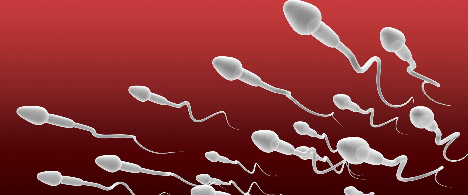 Sperm Count Drop Could Make Us Extinct
