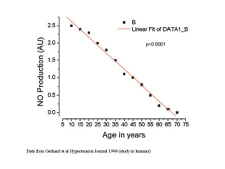 Descrição: Nitric Oxide Aging Graphs